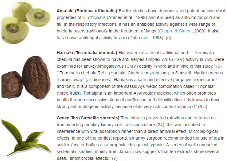 antiviral foods 1