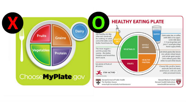 Myplate Health Eating Plate