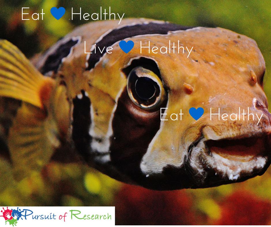 YOUNG FISH EAT PLASTIC LIKE KIDS EAT JUNK FOOD