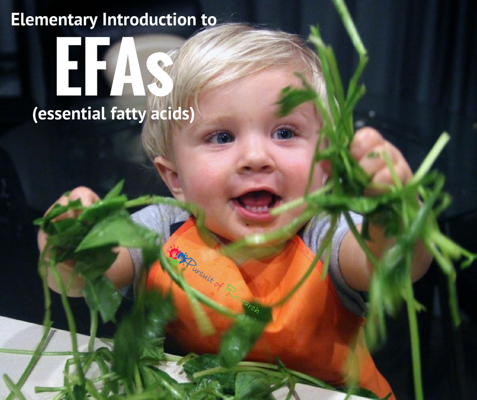 Elementary Introduction to EFAs (essential fatty acids)