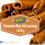 Cinnamon May Aid Learning Ability