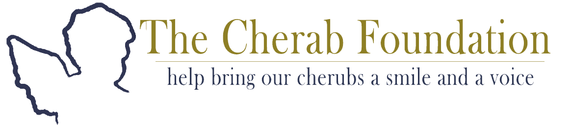 Cherab Foundation Large