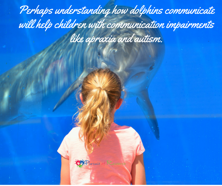 Perhaps understanding how dolphins communicate will help children with communication impairments like apraxia and autism.