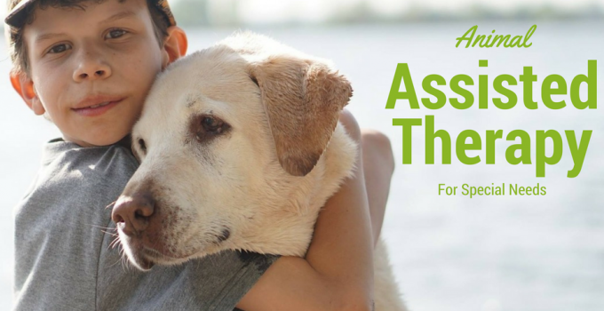 Animal Assisted Therapy For Special Needs