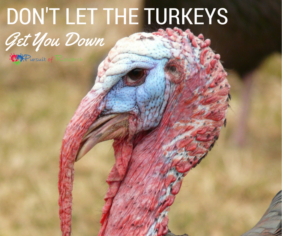 Don't Let The Turkeys Get You Down This Holiday Season