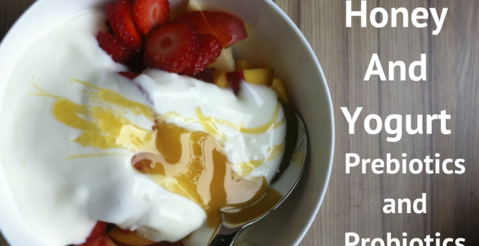 Honey And Yogurt, Or Prebiotics And Probiotics