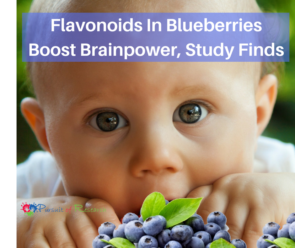 Flavonoids In Blueberries Boost Brainpower, Study Finds (1)