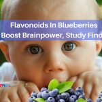 Flavonoids In Blueberries Boost Brainpower, Study Finds