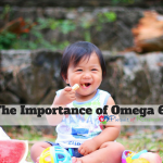 The Importance of Omega 6 (1)