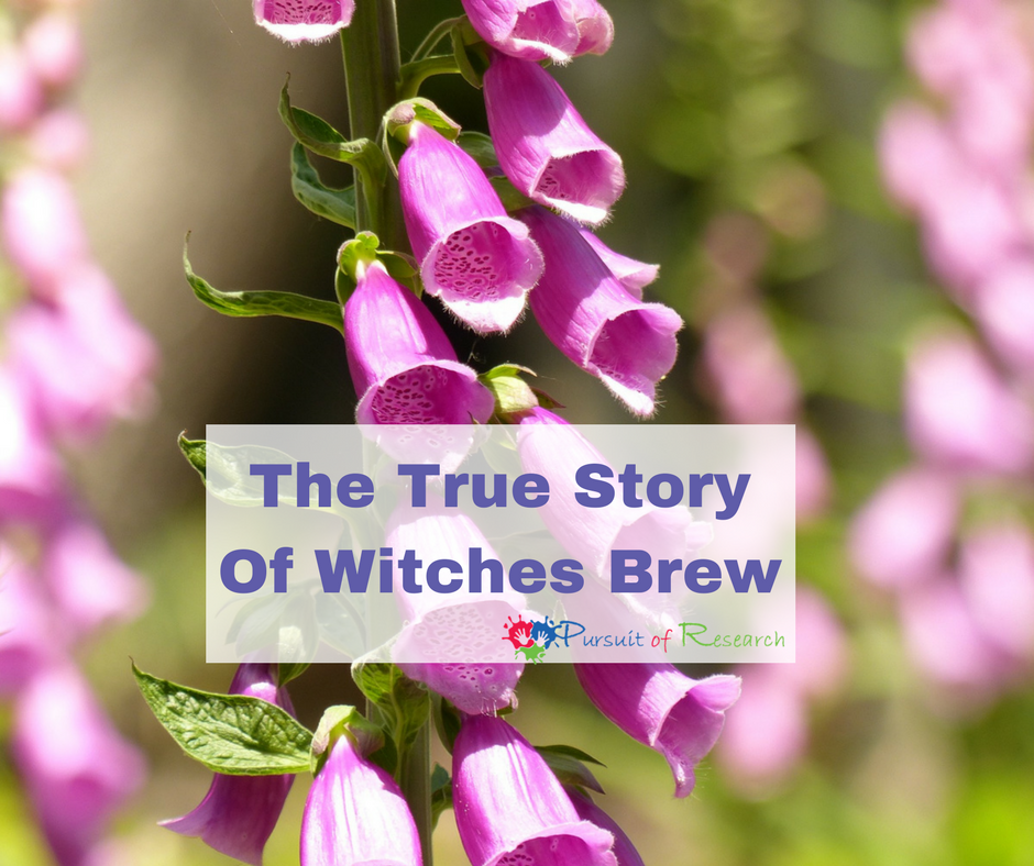The True Story Of Witches Brew